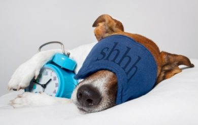 Does Sleep Affect Thyroid Function
